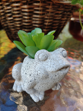 Load image into Gallery viewer, Tiny Critter Planter Pots with faux succulent plants included.