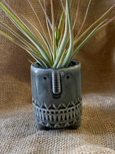 Load image into Gallery viewer, Happy Blue Whale Planter - Nautical | Succulent planter | indoor/outdoor | Ceramic