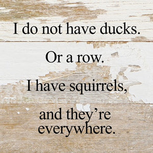 "I do not have ducks. Or a row. I have squirrels, and they're everywhere. 6"" x 6"" white wash"