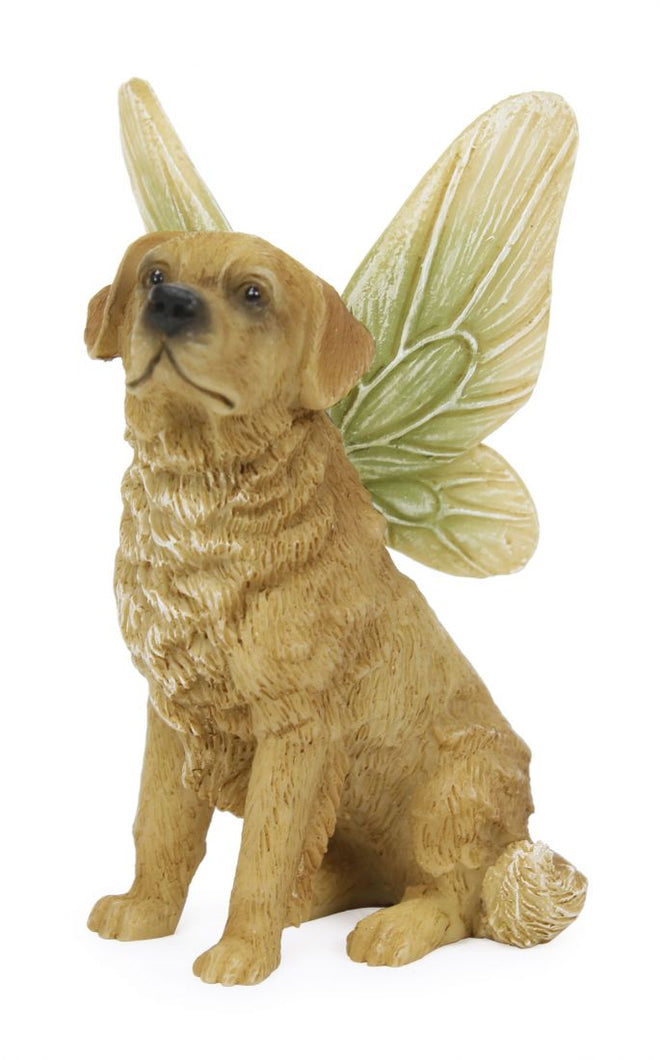 cute golden retriever sitting.  He has green wings fading to  yellow on the edges.  Big brown eyes and black nose and his ears are down.