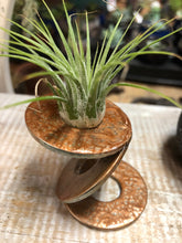 Load image into Gallery viewer, Air plant metal stand | Air plant display | Air plant holder | Tillandsia holder | tillandsia stand | office air plant stand|