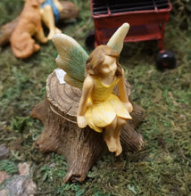 Load image into Gallery viewer, Garden Fairy on Stump with secret opening | MG322