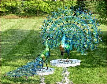 Set of 2 Large Peacock Statues |