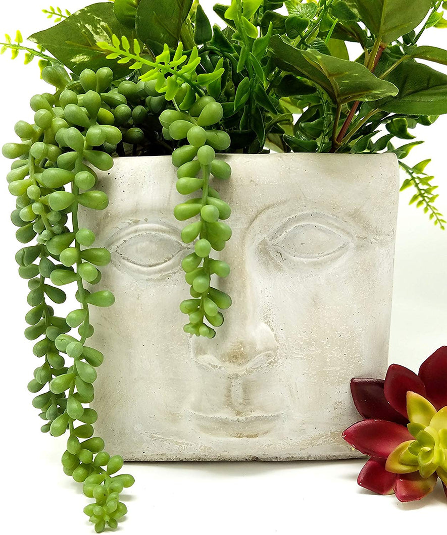 Square Succulent Planter Modern Cement Indoor Outdoor Planter Face Pot for Home or Office | Great for Cactus, Aloe Concrete Head Planter
