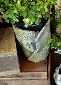 Large ~ Wrap head cement planter great for succulents or favorite house plant