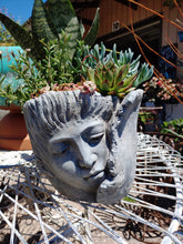 Load image into Gallery viewer, Large ~ Wrap head cement planter great for succulents or favorite house plant