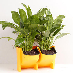 Self Watering Stackable Flower Pots - findurtrend