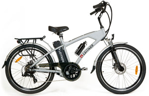 Electric Bike Leitner Berlin Silver