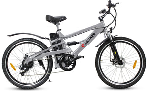 Electric Mountain Bike Leitner CrossX Silver