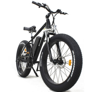Electric Fat Bike Leitner Front