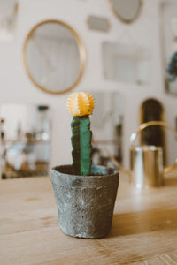 Concrete Pot - black