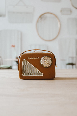 Pavillon Portable Picknick Radio