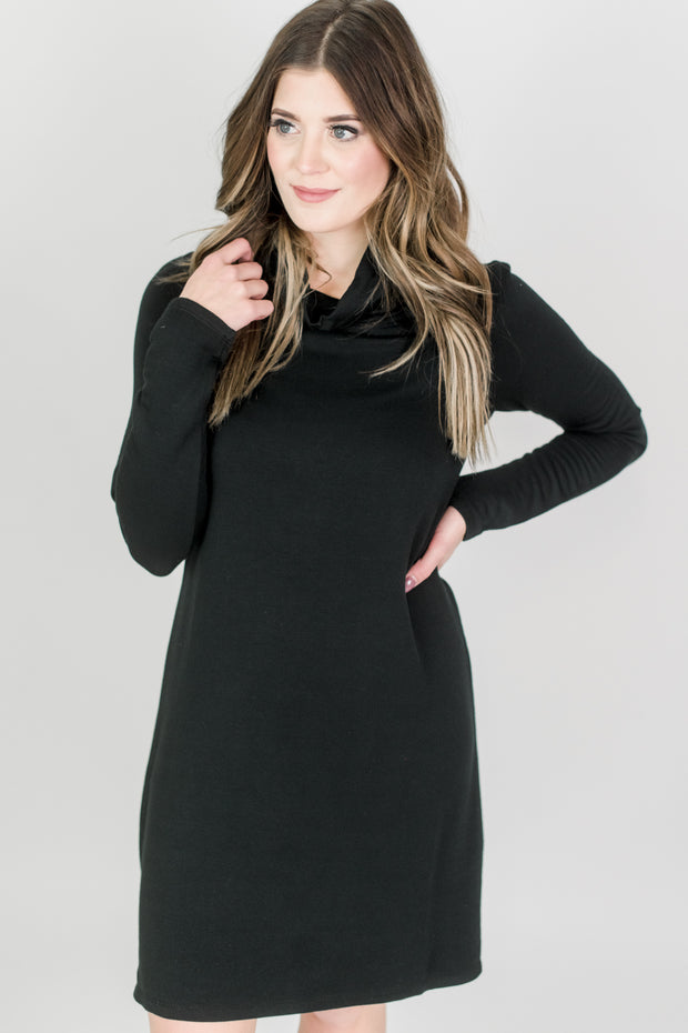 Z Supply Premium Fleece Turtleneck Dress