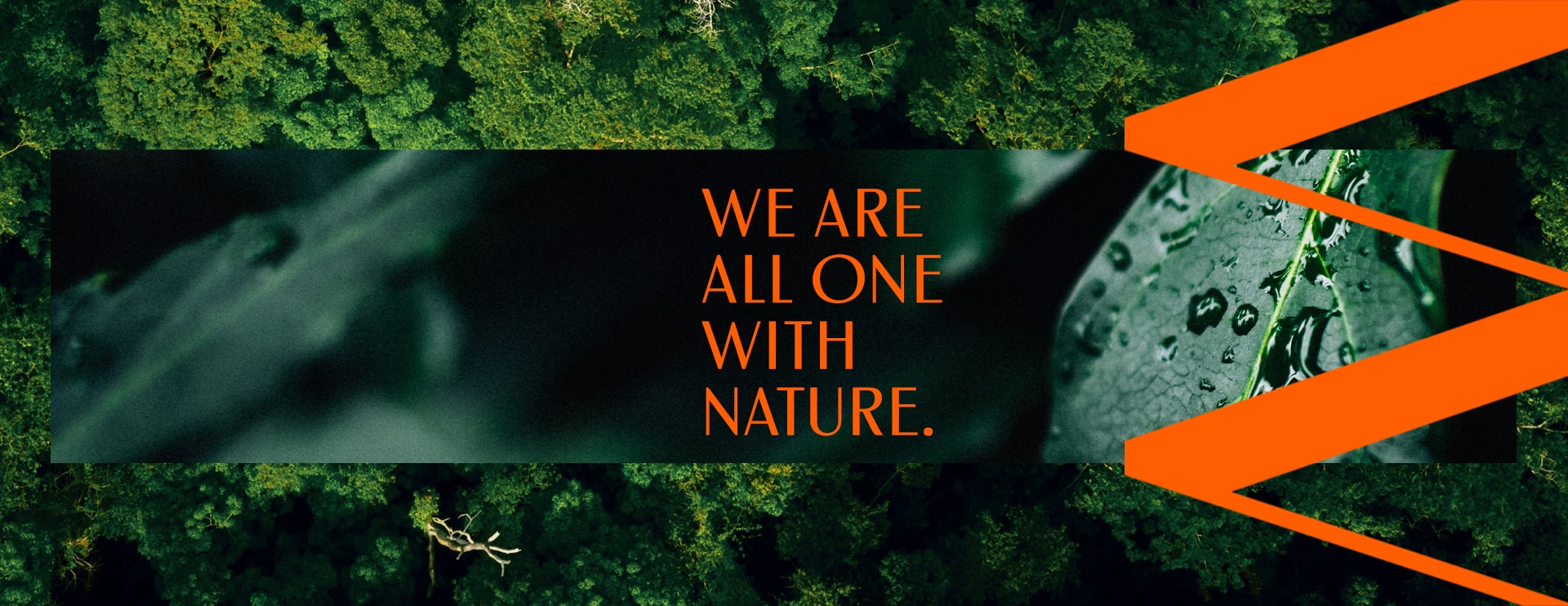 natura ekos earth day - we are one all with nature