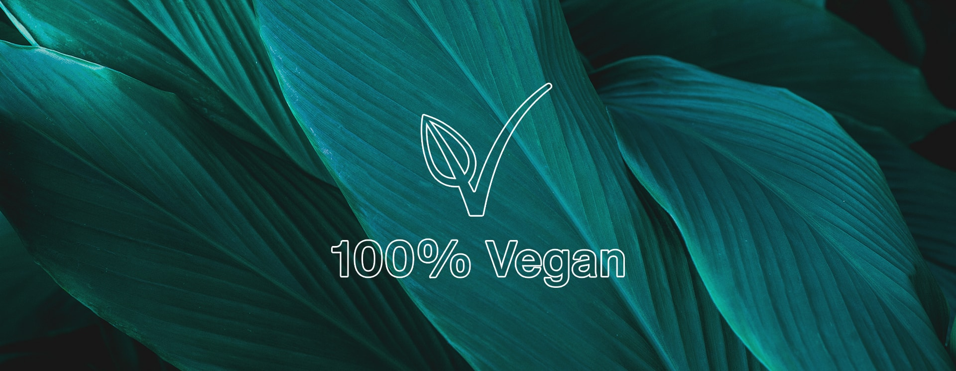 3 reasons why 100% vegan beauty is the best for you