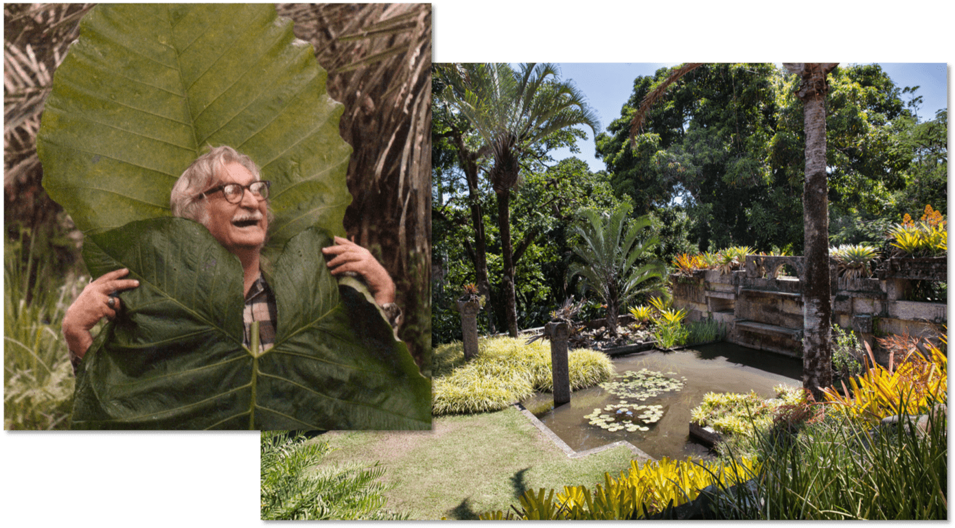 roberto burle marx and one of his gardens