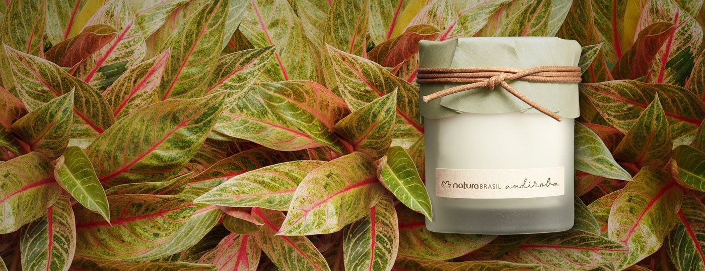 Andiroba Scented candle_170g