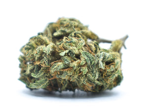 White Widow Indoor 20% CBD (100€/10G + 1 OFFERT= 9€/G)