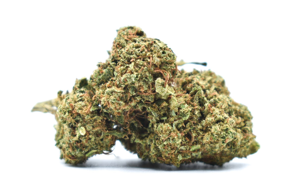 Sugar Daddy Indoor CBD+CBDA=20% (100€/10G + 1 OFFERT= 9€/G)