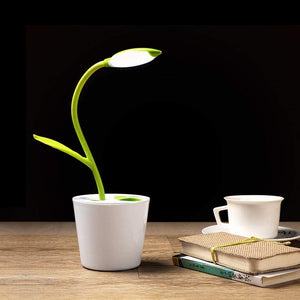 Sapling Rechargeable LED Light