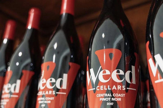 Weed Cellars 2017 Central Coast Pinot Noir awarded a 90-point rating from Tasting Panel Magazine