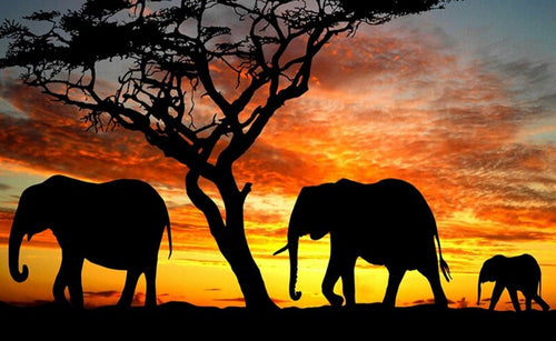 African Elephant Family Paint by Diamonds