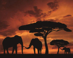 African Elephants Paint by Diamonds