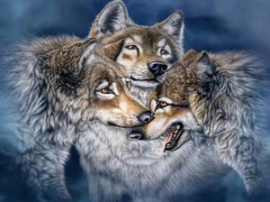Alaskan Tundra wolves Paint by Diamonds