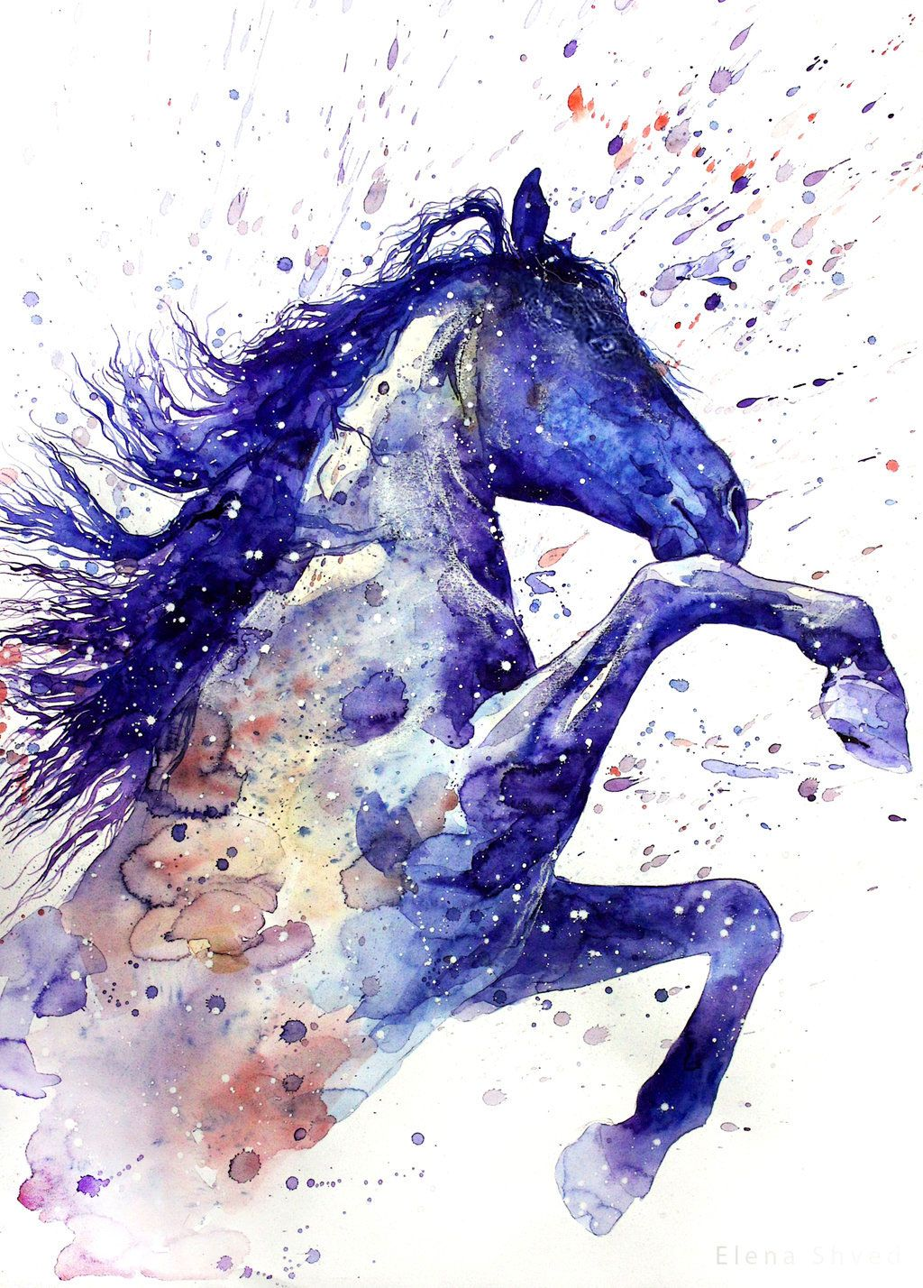 Alluring Horse Diamond Painting Kit