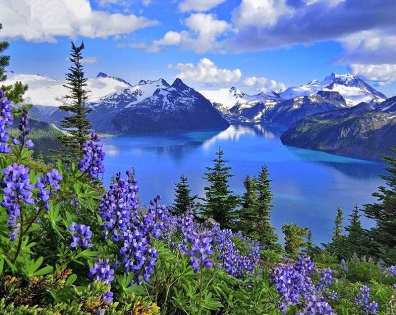 Amazing Mountains View & Blue Flowers Diamond Painting