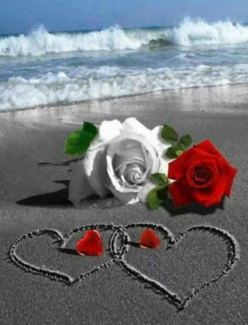 Beach Roses Paint by Diamonds