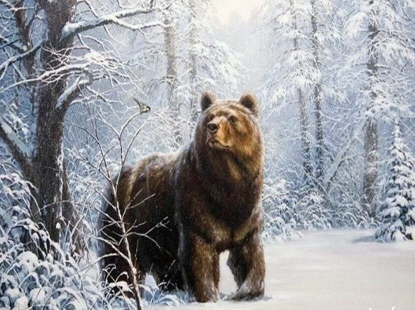 Bear DIY Diamond Painting