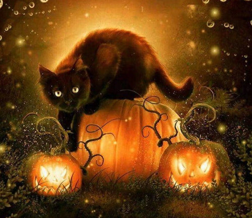 Black Cat & Halloween Pumpkins Diamond Painting