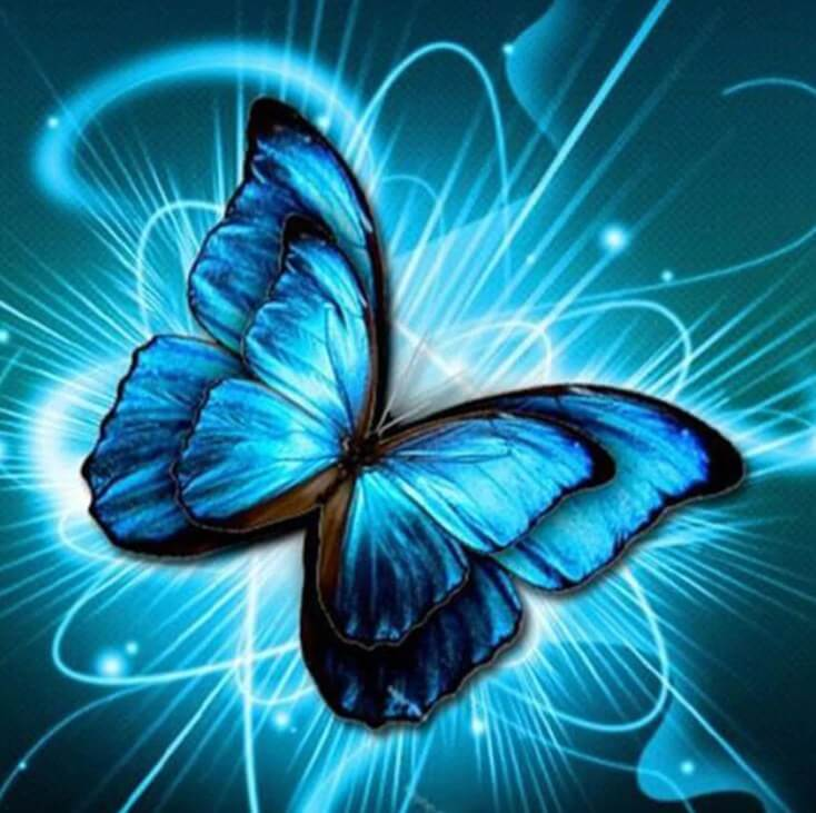 3D Butterfly Painting Kit