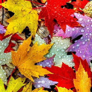 Leaves Diamond Painting Kit