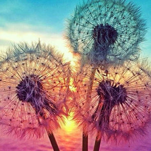 Dandelions Diamond Painting Kit