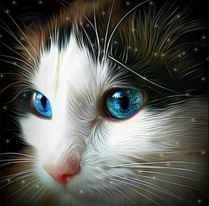 Fascinating Cat with Blue Eyes Diamond Painting