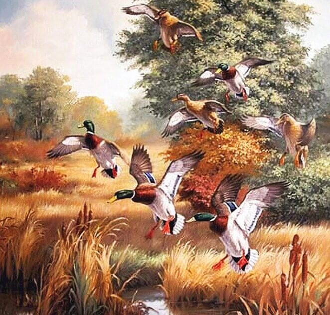 Ducks Diamond Painting