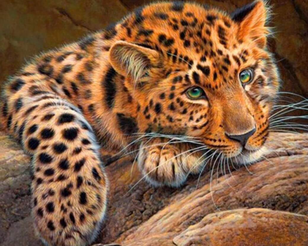 Cheetah Diamond Painting Kit