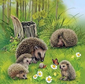 Hedgehog DIY Diamond Painting