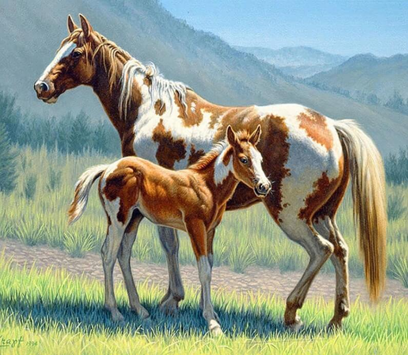 Horse Full Drill painting