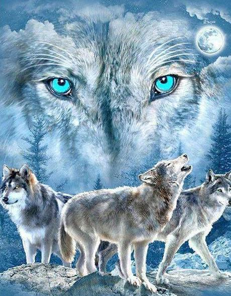 5d Wolf Diamond Painting