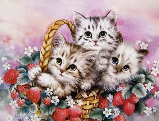 Kittens Diamond Painting Kit