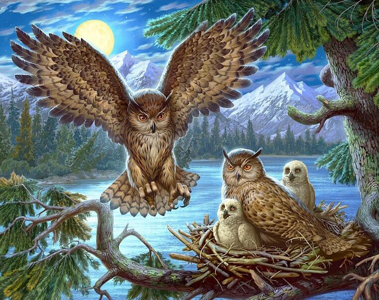 Owls DIY Diamond Painting