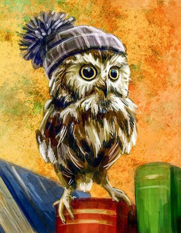 Owl Square Drill Painting Kit