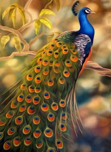 Peacock DIY Diamond Painting Kit