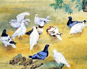 Pigeons Paint by Diamonds