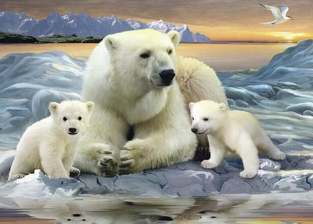 Polar Bears Paint by Diamonds