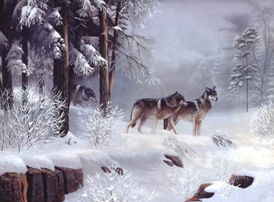 Snow Wolves Paint by Diamonds