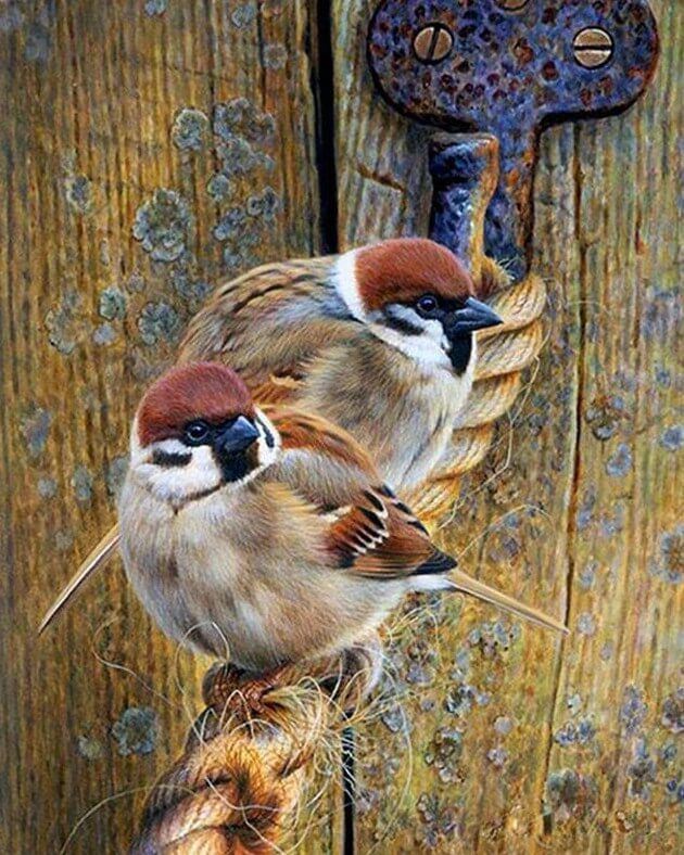 Sparrows Square Drill painting